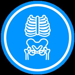 Icon Set X-Ray